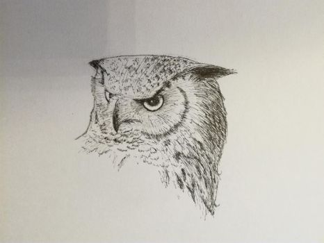 Inktober 2017, Day 17: eagle owl by GLangGould