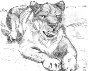 Laying lioness by AltaikaTau