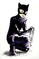 Catwoman has class by shortfury