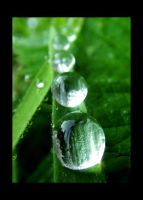 The Droplet Line by Lord-Dip