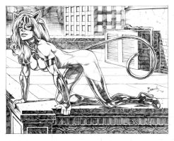 Feral Kat Rooftop by Bambs79