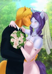 Equestrian Heroes Wedding  The1 st Wedding by TheRealKyuubi16