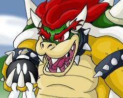 Bowser by zurtech
