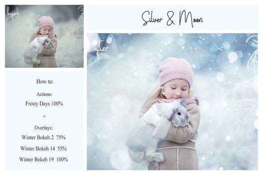 Winter Bundle: PS Actions + Overlays by sharonovKira