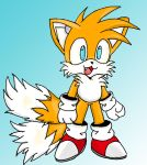 Chibi tails by Vgkitties