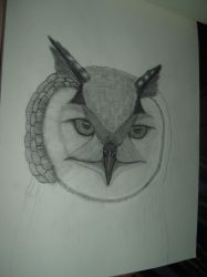 Unfinished Owl by jhdragonreader