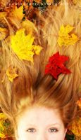 Autumn III by Thilu