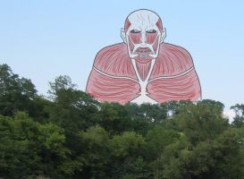 Attack on Titan Colossal Titan by Melody2724