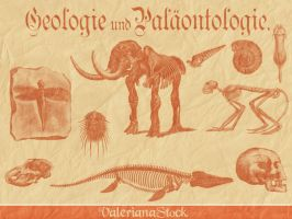 Paleontology GIMP Brushes by ValerianaSTOCK
