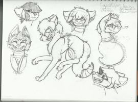 Lupivulpes Characters by gumiwolf