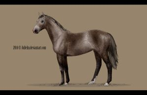 Thoroughbred Auction #4 ENDED by Jullelin