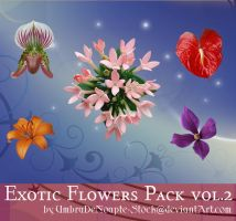 Exotic Flowers Pack vol.2 by UmbraDeNoapte-Stock