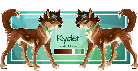 Ryder - *REDUCED* $15 - available by mochiimomo