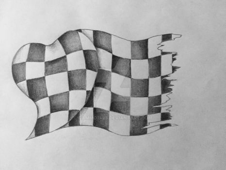 racing flag 2 by Cammo7495