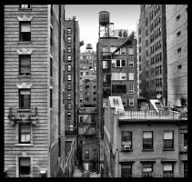 The Look North BW Square Print by steeber