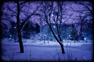 Violet night by petsQ8D