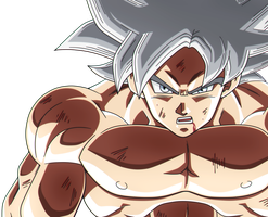 Goku Mastered Ultra Instinct (re-color) by VictorMontecinos