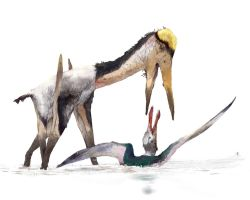 Alanqa attacked Siroccopteryx by Guindagear