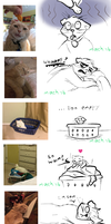 Funniest Moments of my Album by AnMachi