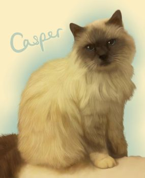 Casper by thesoulcanwait