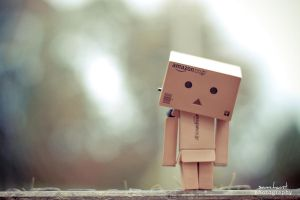 danbo. by sam-hunt