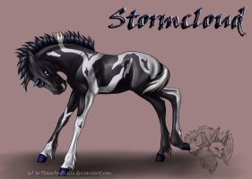 Reckless x Storm - Stormcloud by FlareAndIcicle