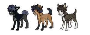 Canine Adopts [OPEN] by KeuAdopts