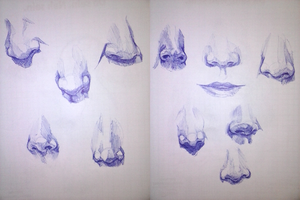 nose sketches by Millix3
