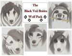 BVB Wolf Pack by wolvenwillow