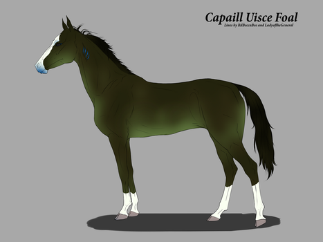 A037 Capaill Uisce Foal by Aislein