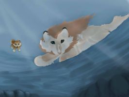 Diving 02 - Miracle and Honey Bee by magikwolf