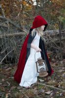 Little red riding hood Premium Stock 3 by HigherSeeking