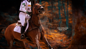 TCE Vitanis by Horses-Are-Real