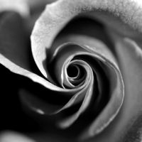 For you by Haen9