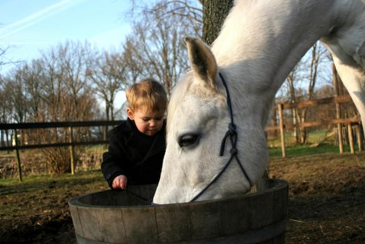 a boy and his horse.. by DiddyHiggy