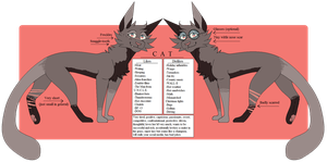 CATSONA REF by wondergunned