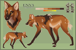 Commission: Enya Reference Sheet by Just-Joeying