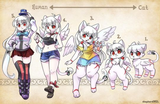 OC Types - Angel Cat by shepherd0821