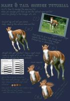 Mane and Tail Tutorial by equinewoods