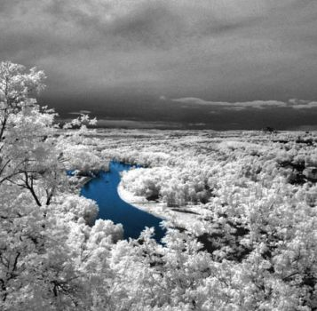infrared photography 6 by Shim7