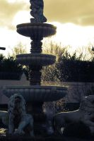 Fountain of Youth by froggypondd