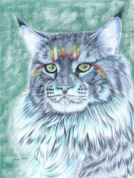 Rainbow Kitty - colored pencil drawing by kad-portraits