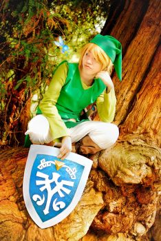 The Legend of Zelda - Mojo's Messenger by TrustOurWorldNow