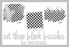 Set Three Block Brushes by Incripacu
