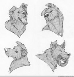 Headshot Expressions: Shadow by FlannMoriath
