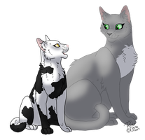 Needletail and Violetpaw by RiverBelle