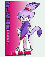 Blaze the Cat by GemTheRaccoon