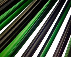 green vs. black vs. white by abhimanyughoshal