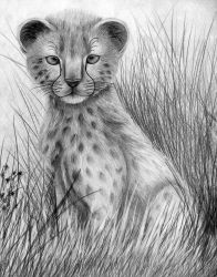 Cheetah Baby by MissCreamBerry