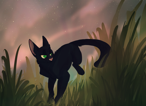 Escape the night by cyberacat